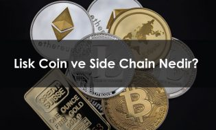 Lisk Coin ve Side Chain Nedir?